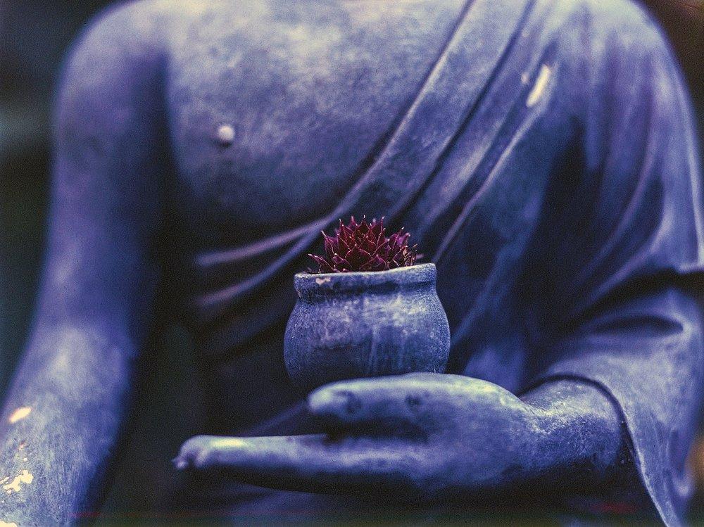 Tanya Vallianos_Guided Meditations_InnerSunHealingArts