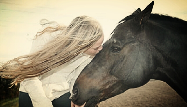 Equine-Assisted+Therapy_Inner+Sun+Healing+Arts.jpg
