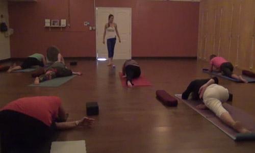 Vinyasa Flow Practice