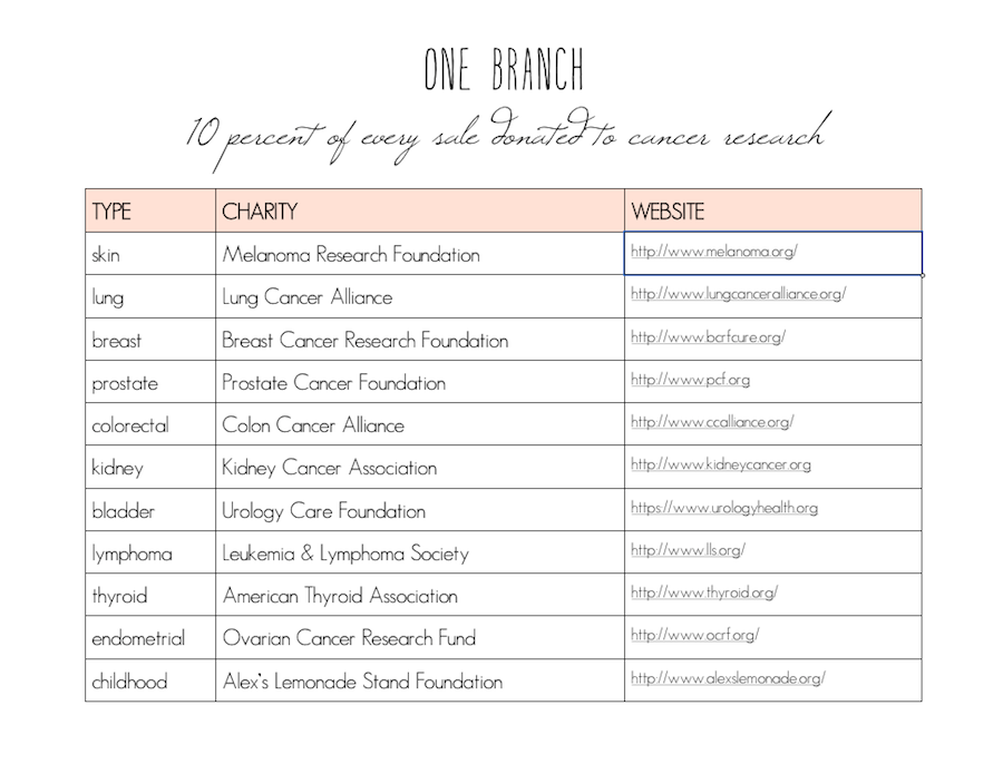 one branch postcard subscription service by sweet eventide cancer research funding