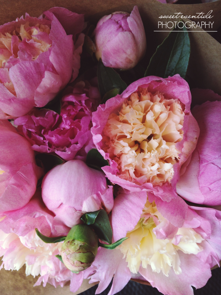 Espe Floral Portland Oregon market peonies flowers photography by Jessica Nichols Sweet Eventide