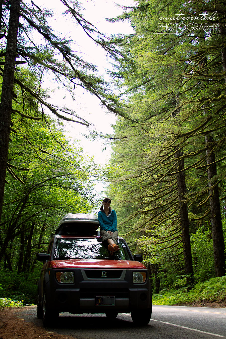 tillamook forest honda element road trip photo