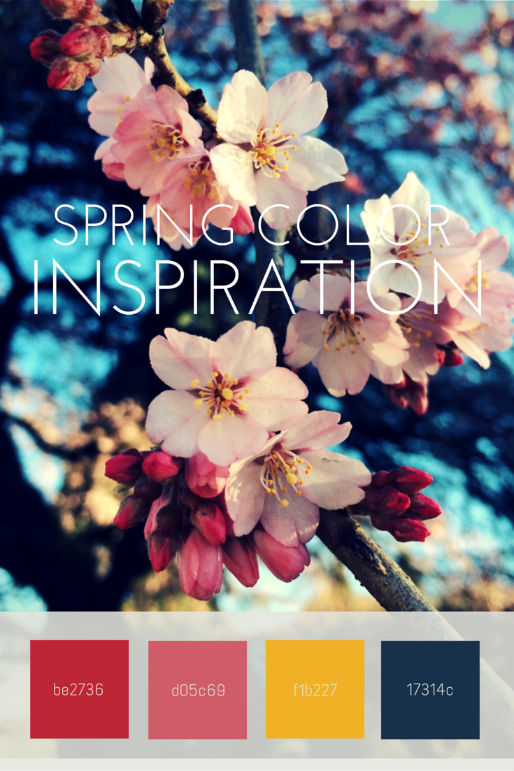 plum blossoms photography spring color inspiration palette color swatches