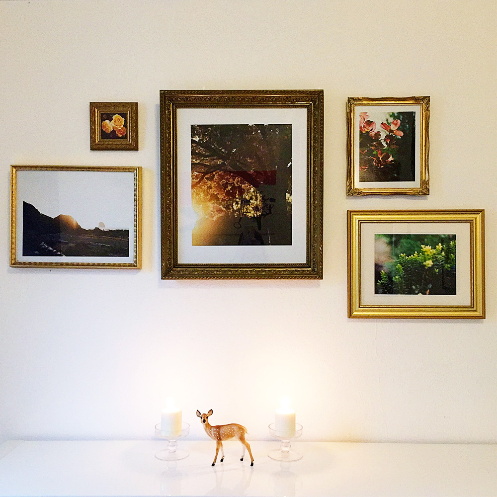 gold frame gallery wall flower and nature photographs