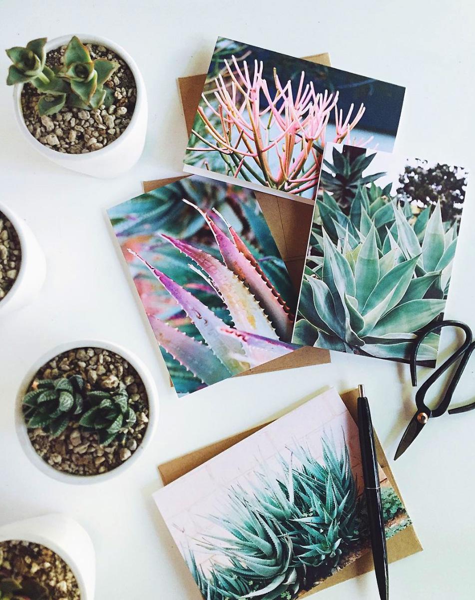 desert botanical lifestyle.jpg