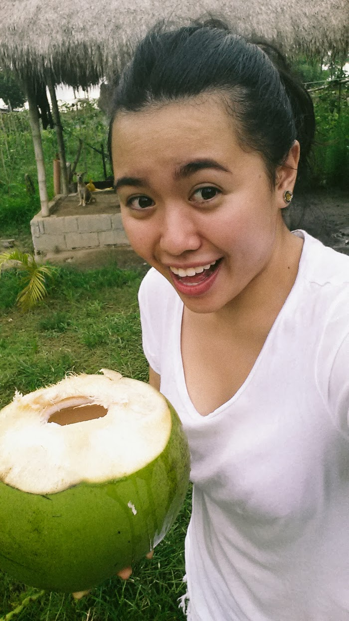 drinking fresh coconuts