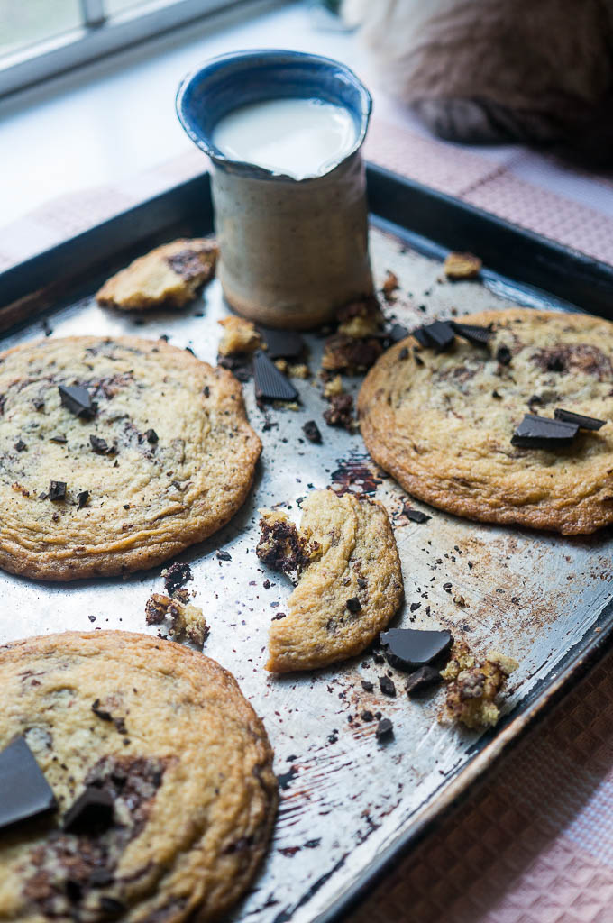 Wrinkly Chocolate Chip Cookies
