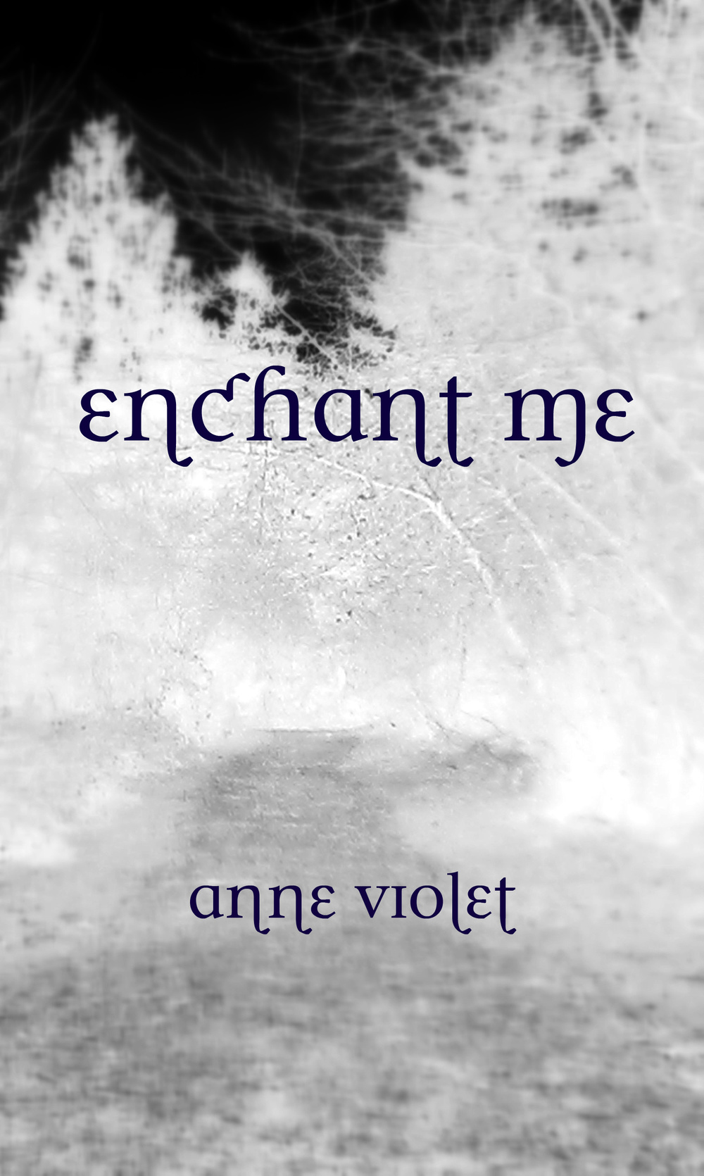 enchant-me-cover.jpg