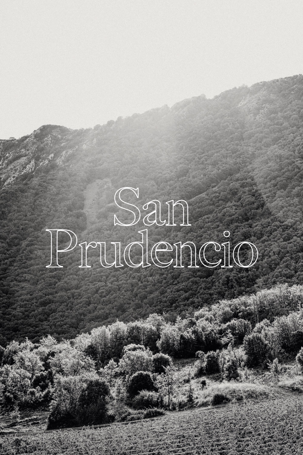 In a land of castles and conquerors, atop mountains, Ruben Saenz grows the vines that are the pride of Bodegas San Prudencio. Perseverance, centuries of know-how and braveness have resulted in vines growing at an unlikelyhigh altitude and wines that preserve the traditions and natural greatness of this land. - APPELLATION RIOJA ALTA