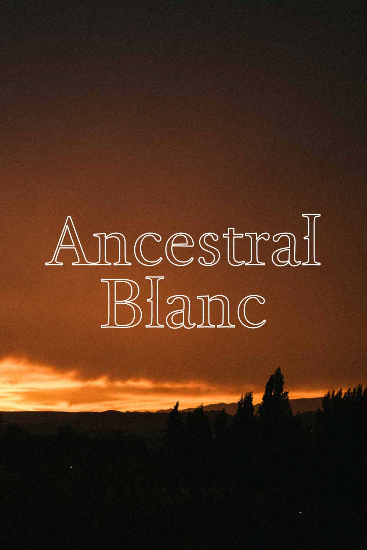 Metamorphika Ancestral Blanc (Sparkling)  - 40% CHENIN BLANC15% XAREL.LO15% GARNACHA15% MACABEU15% PERELLADA