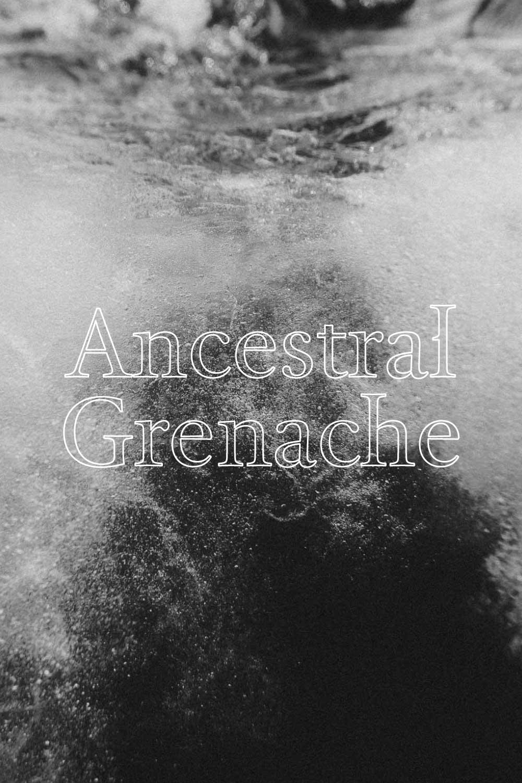 Metamorphika Ancestral Red Grenache (Sparkling) - CARIGNEN