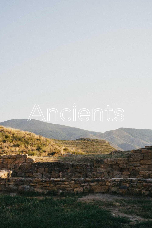 Ancients - 79% CARIGNEN21% GRENACHE