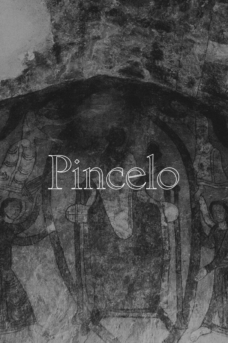 "Pincelo  —  A miracle placed vines in the ""Ribeira Sacra"" and created one of the most astonishing landscapes on earth. And Bodegas Pincelo has a special place in the heaven of Ribeira Sacra.   - APPELLATION RIBEIRA SACRA"
