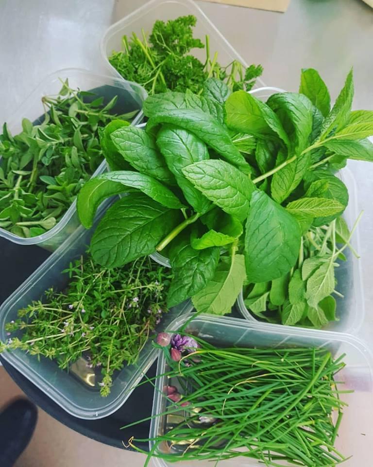 sweet pea restaurant herbs