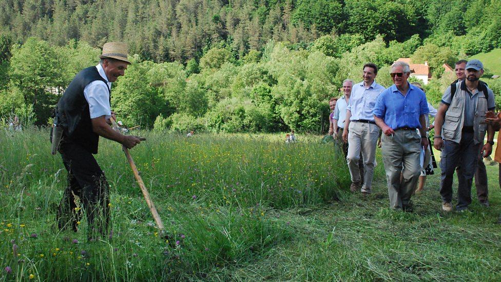 Prince Charles Transylvanian farm