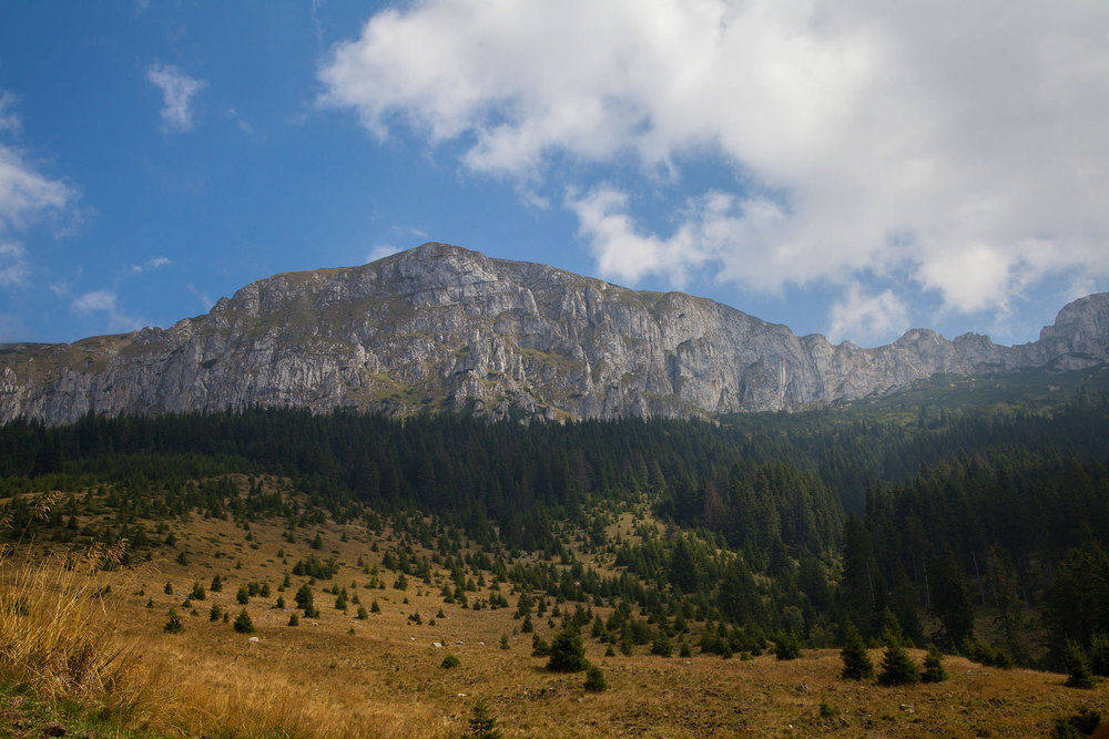 Piatra Craiului Mountains (copyright:  creative commons )