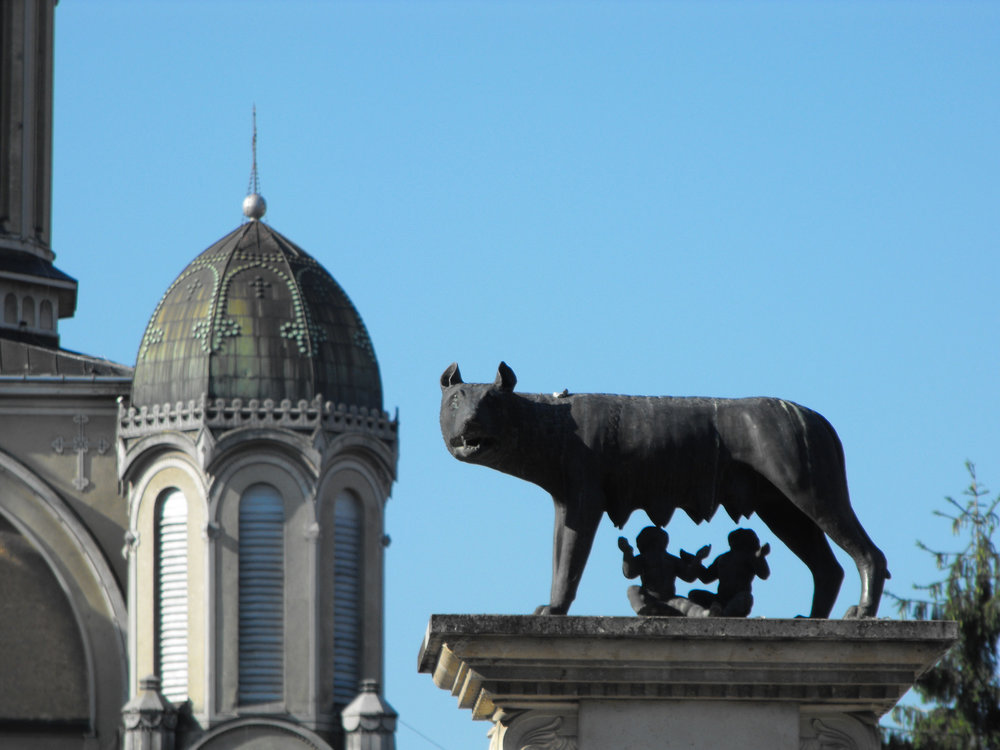 Capitoline Wolf, Satu Mare (copyright:  creative commons )