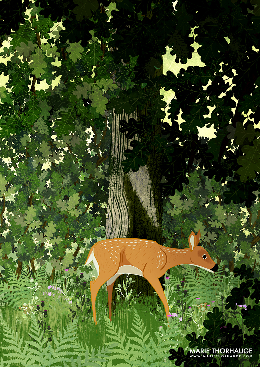 A3_Marie-Thorhauge_Illustration_Deer_sml.jpg