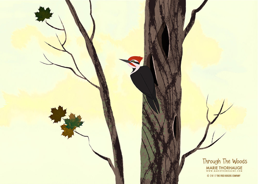 Marie-Thorhauge_Through-The-Woods_Woodpecker_summer.jpg