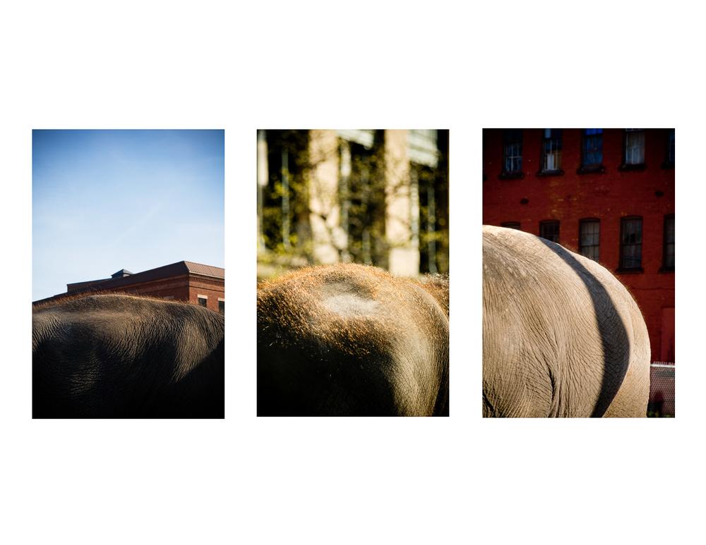 Triptych-2.jpg