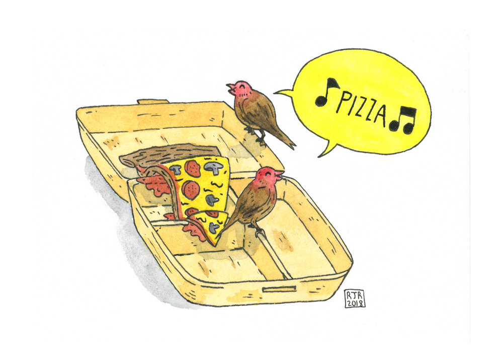 Pizza Birdies.jpg