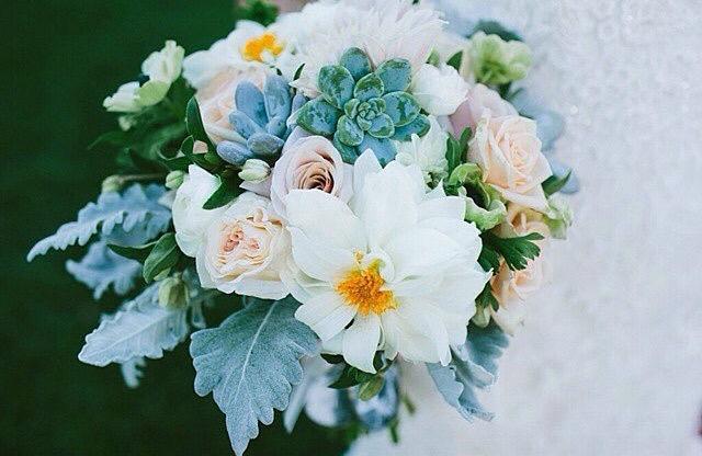 allwhite&succulent.jpg