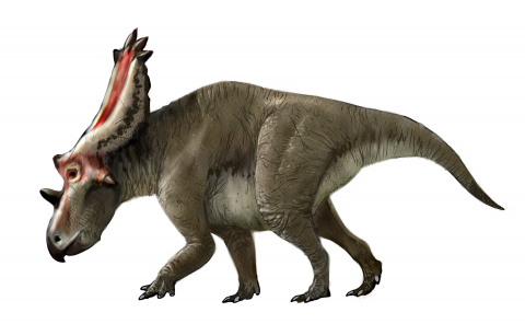 g1864_Utahceratops_1.png