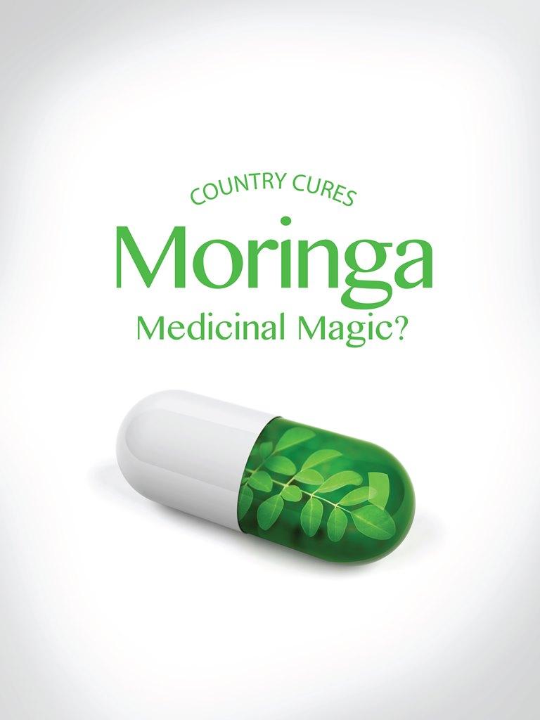 Moringa – Medicinal Magic? — Fairytalekindagirl