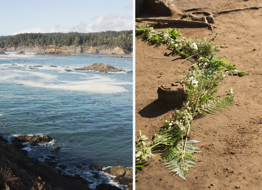 Coastal Mendocino Wedding