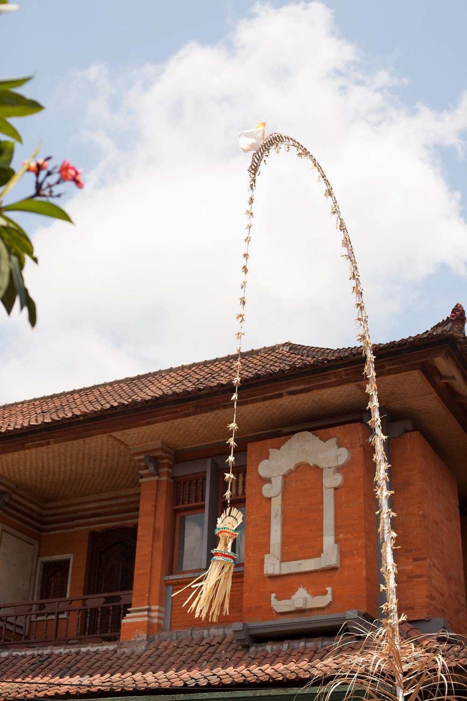43_Ubud_Bali_Indonesia.jpg