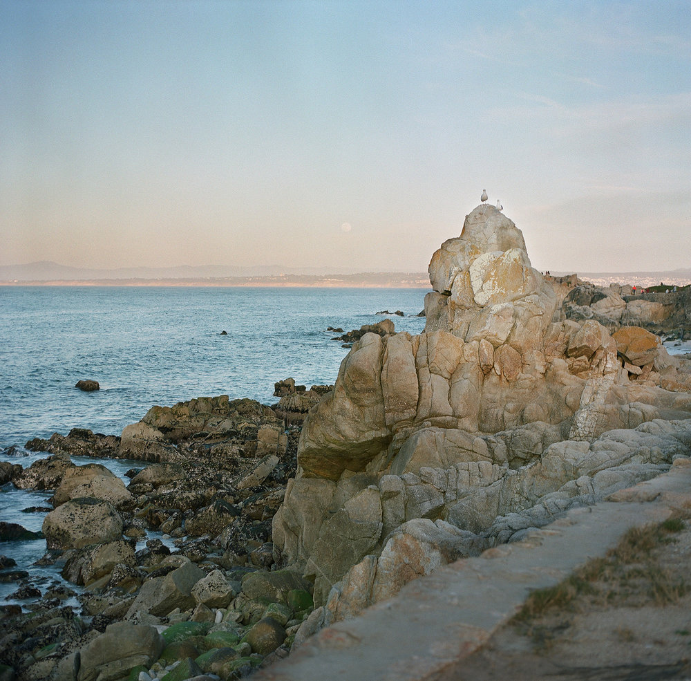 CoastalRocks&Moon_PacificGrove_California_SonyaYruel.jpg