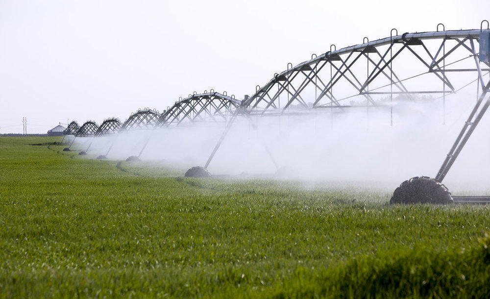 High-capacity wells that have been linked to lower surface water are the source of water for irrigation systems like this one watering a cornfield in Waushara County.
