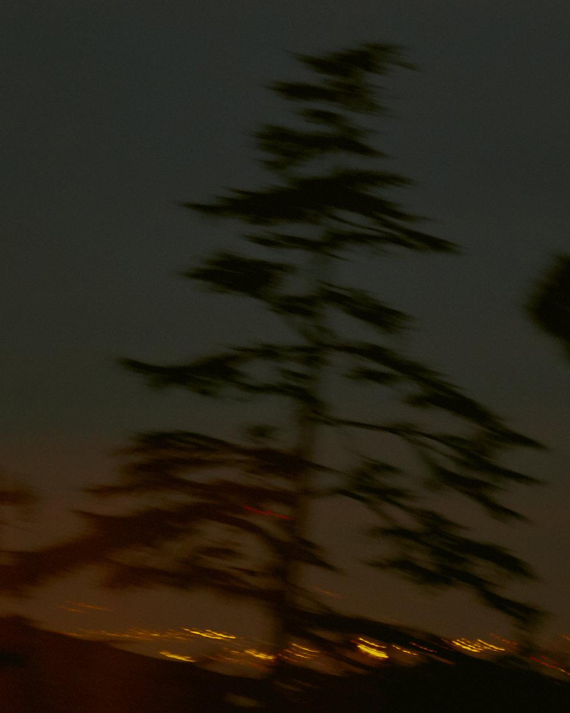 Berkeley-28.jpg