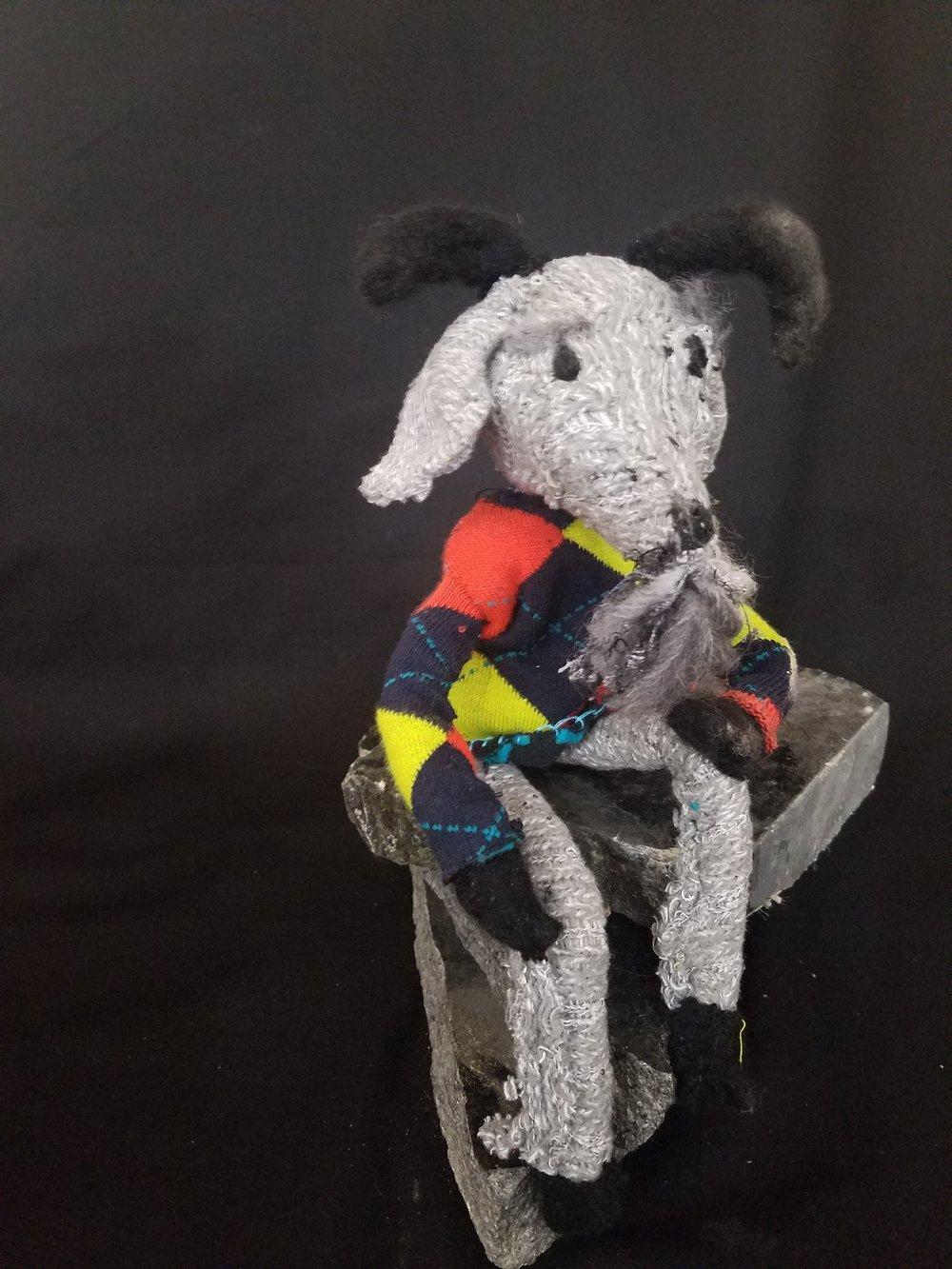 Mr. Goat loves Argyle