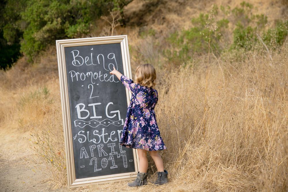 Pregnancy Announcement -Lucia Davis-8064.jpg