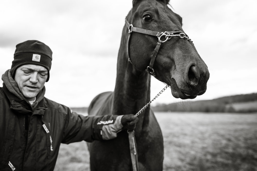 Day in the Life Photography | Race Horse Anwar Hanover & Frank Kamine | Campbell Kamine Photography-6.jpg