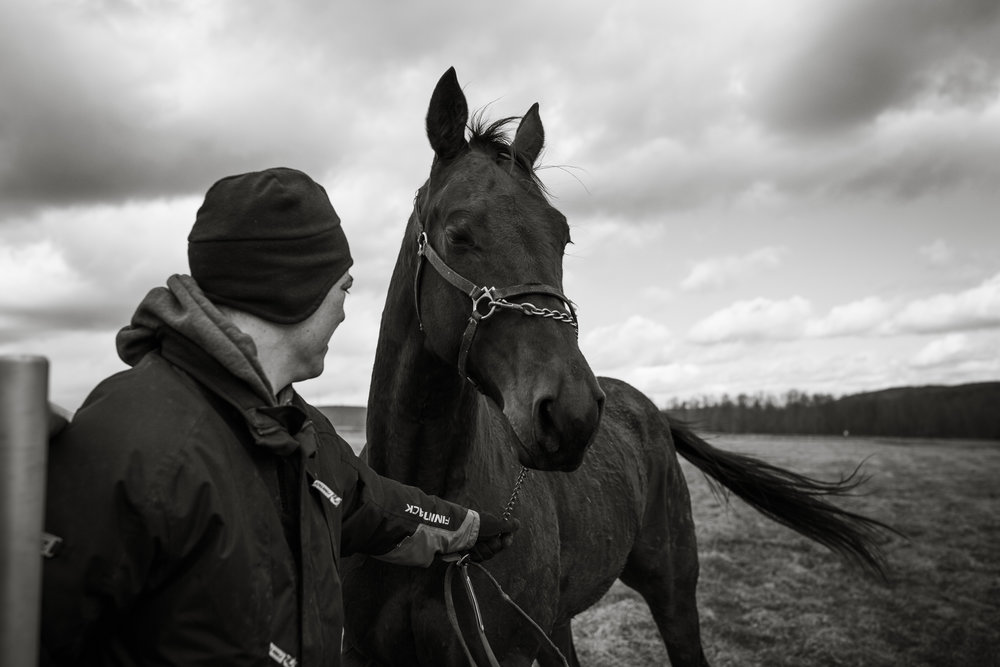 Day in the Life Photography | Race Horse Anwar Hanover & Frank Kamine | Campbell Kamine Photography-3.jpg