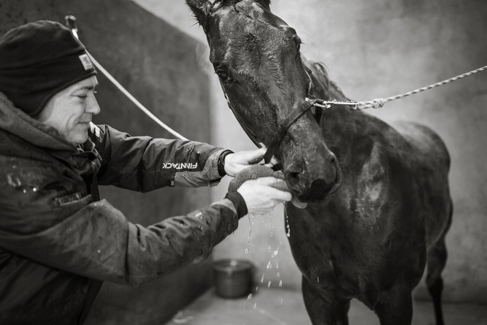 Day in the Life Photography | Race Horse Anwar Hanover & Frank Kamine | Campbell Kamine Photography-29.jpg