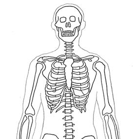 human-body-diagram-sceleton.jpg