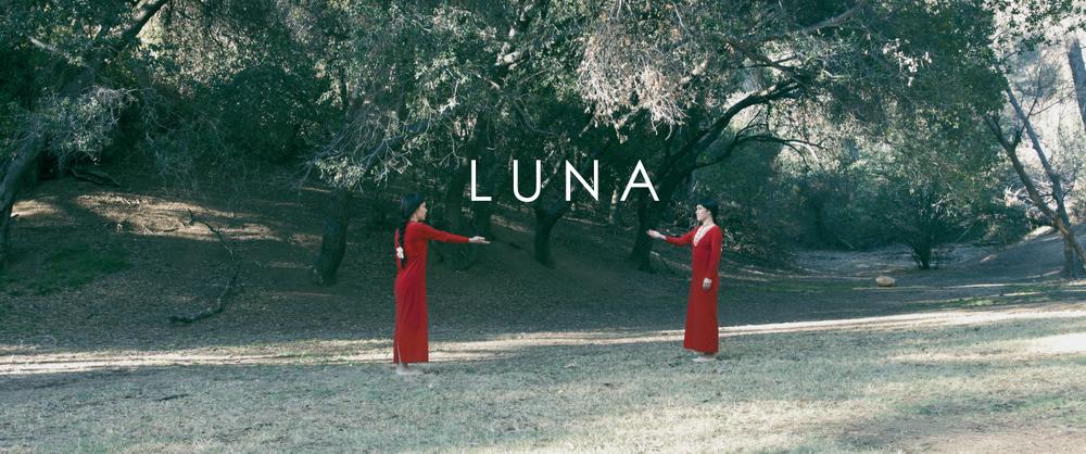 LUNA web2.png