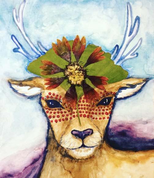 animal deer.jpg