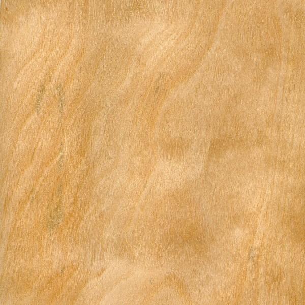 Birch grain.jpg