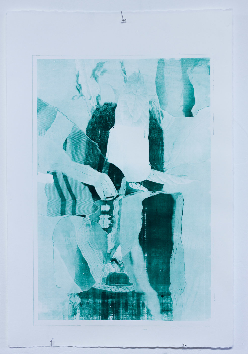 """Bosavi Phenotype #3, 18x24"""", pronto plate print, 2017"""