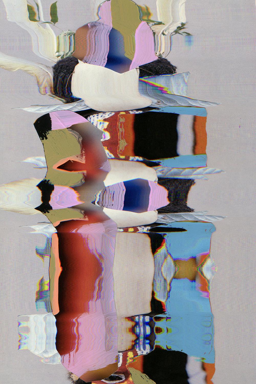 2-PhenotypeOriginal57.jpg