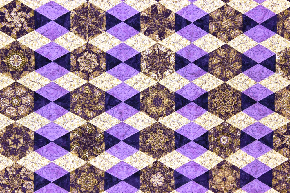 Jo's quilt 8 closeup.JPG