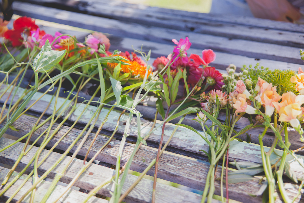 Colourful Wedding Ideas - Wedding Flowers Winnipeg