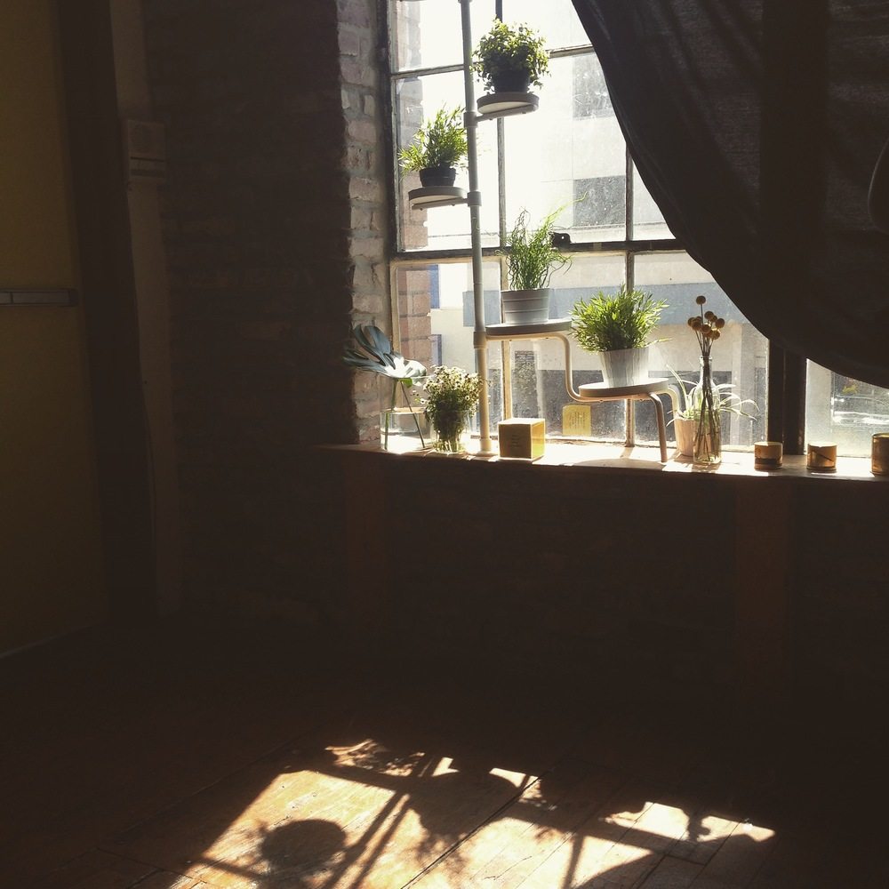 yellow-conference-2015-plant-wall-window