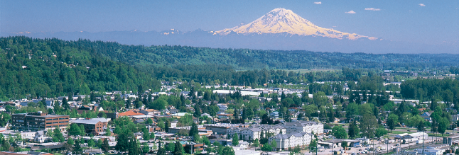 We serve the technology needs of businesses in the Greater Seattle Metro Area