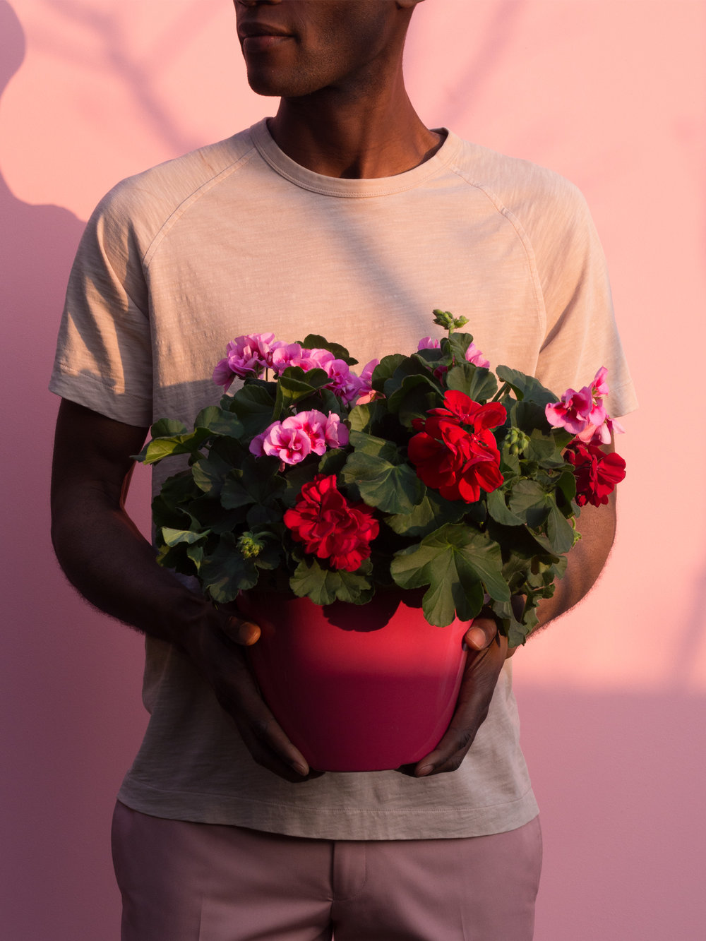 Pink+Holding (1).jpg