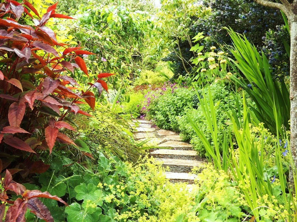 Perennials and shrubs almost hide this flagstone path, leading to a secret patio in the middle of the garden.